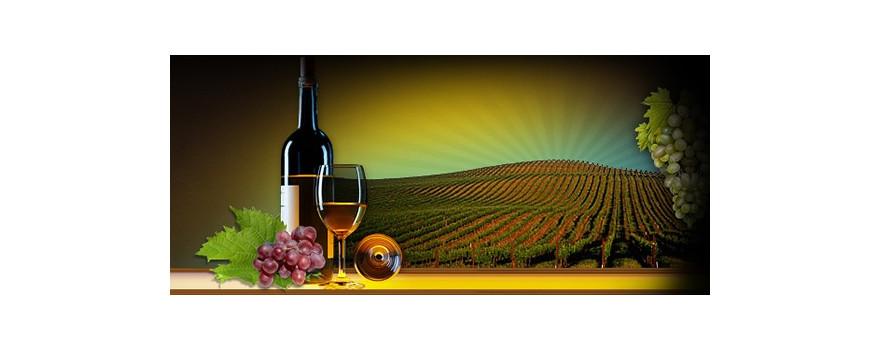 vinos ecológicos
